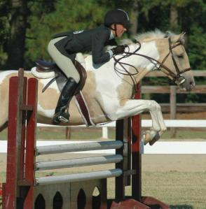 Paint Horse Jumping
