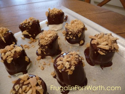 Dark Chocolate Marshallow S'mores Truffle Bites